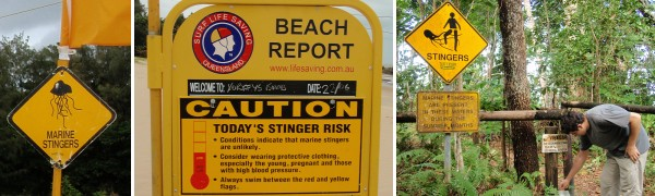 I like the warning sign in the right picture: the stinger looks monstrous.