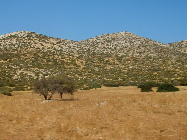 Dry shrubs hill at Sounion, Attica Peninsula