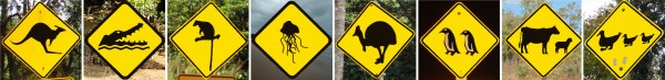 Check out: Top 8 Animal Street Sign