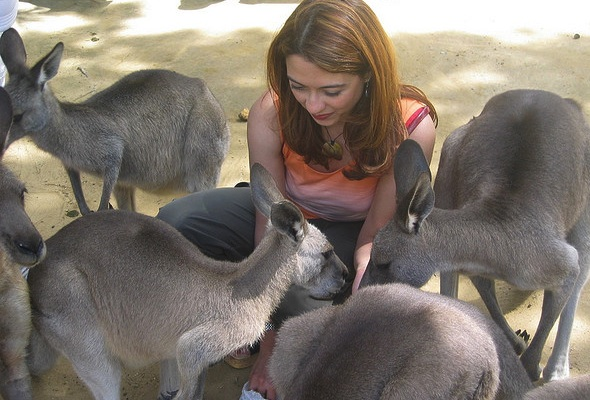 Playing with kangaroos (Photo © Prolific Living)