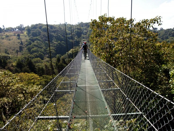 The bridge to the Tarzan swing platform in Monteverde, Costa Rica