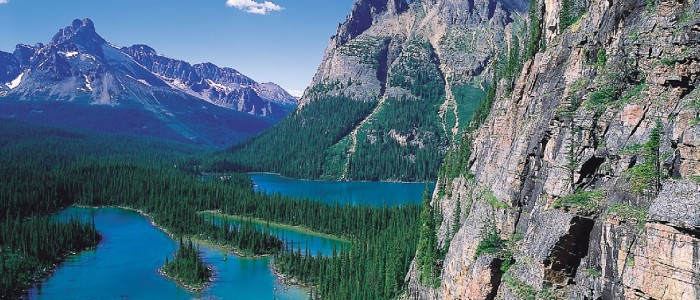 Rocky mountain cliffs and Lake O'Hara in Yoho National Park, British Columbia, Canada.