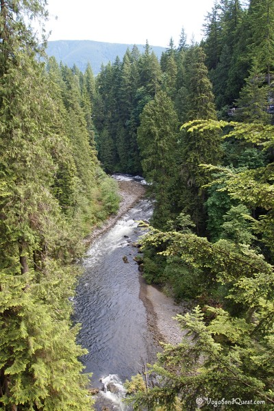 The view from Capilano Suspension Bridge